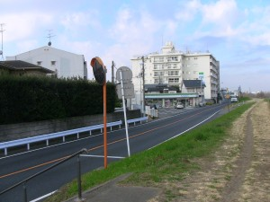 IMG_0517 (2)